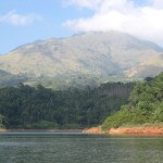 wayanad in kerala for a brush with nature