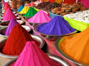 Celebrating Festival of Colours