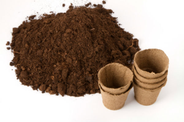 How to Start Your Own Home Composting Pit?