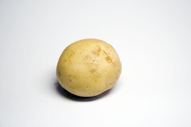Stinking Potatoes: A Story