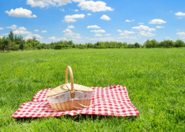 Checklist for Planning a Picnic